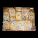 CD 3 Noob (physique)